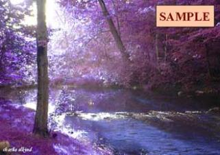 Blue Stream and Violet Trees